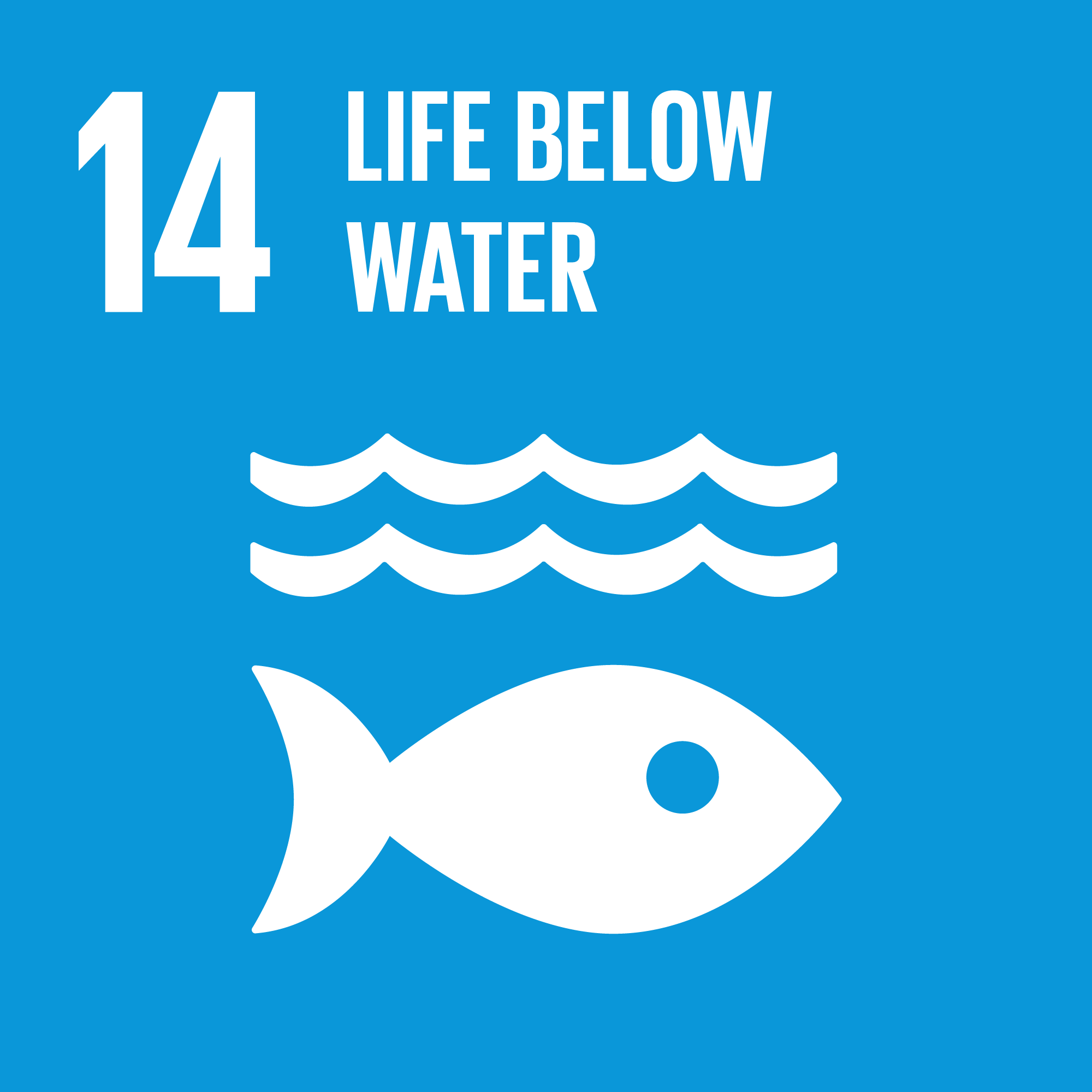 TheGlobalGoals_Icons_Color_Goal_14